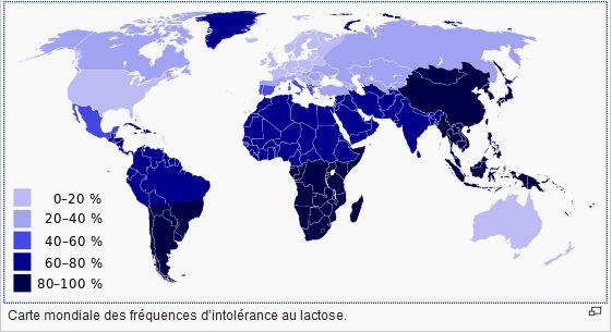 intolerance lactose monde