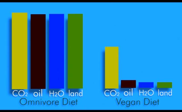 comparaison des consommations d'energie en fonction du régime alimentaire