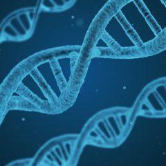 L'épigénétique – Au-delà de la génétique – Partie 3