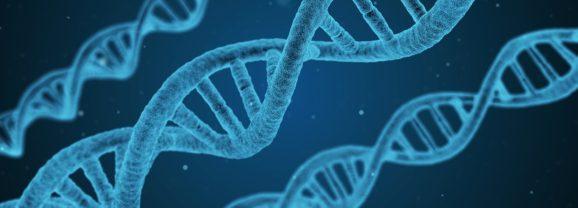 L'épigénétique – Au-delà de la génétique – Part 1