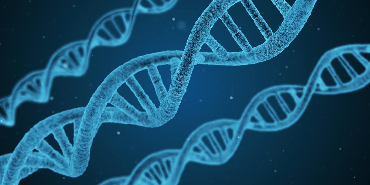 Biologie et génétique – Où les gènes entrent en scène – Partie 3